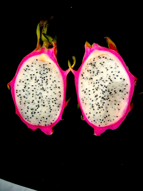 Cross section of dragonfruit with black seeds in white pulp - Photo WVC P1030059