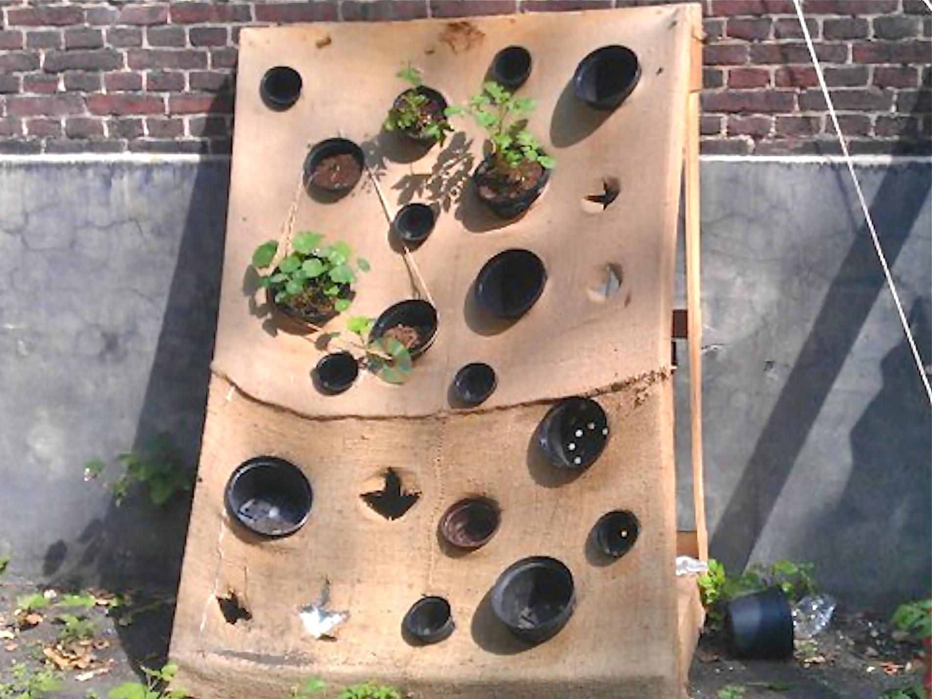 2011 U2013 Vertical Gardening ...