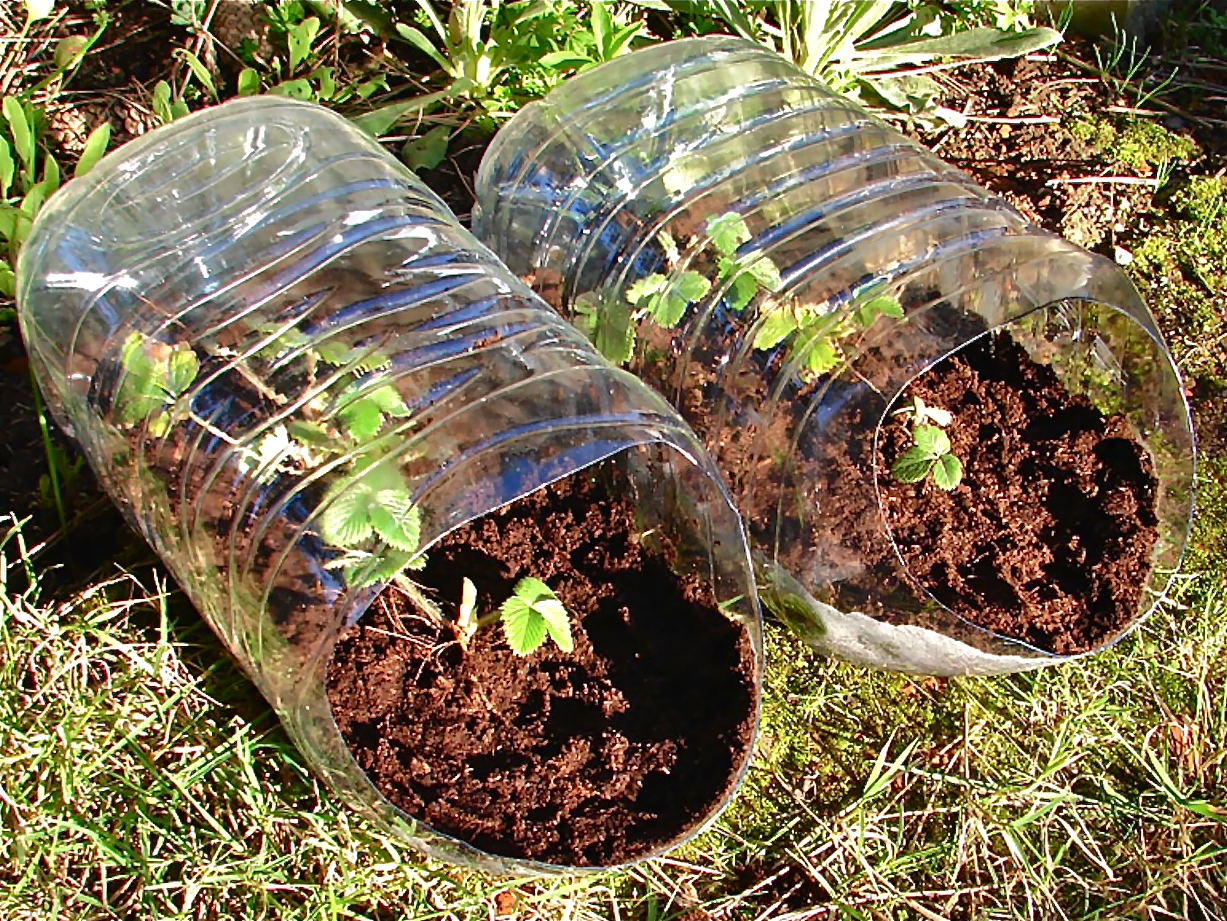 Gardening in hanging containers st lucas institute ghent willem van cotthem container - Soil for container vegetable gardening ...