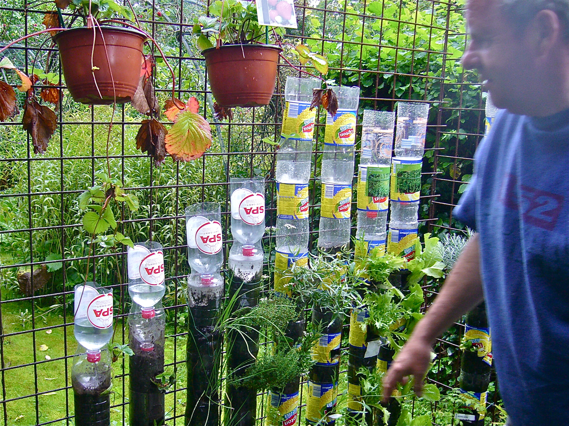 Bottle tower gardening how to start willem van cotthem - Bricolage avec bouteille plastique ...