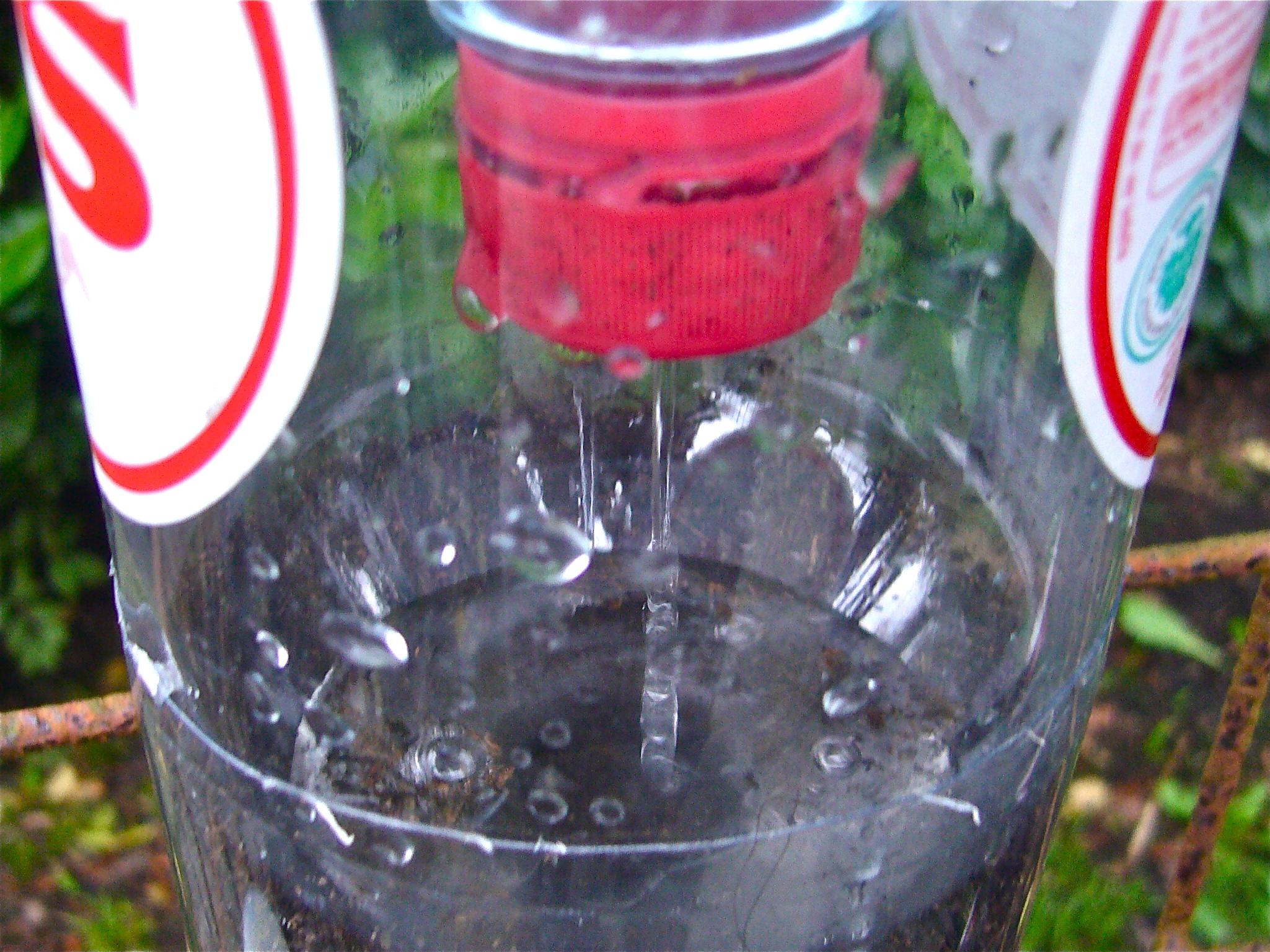 Bottle Tower Gardening How To Start Willem Van Cotthem
