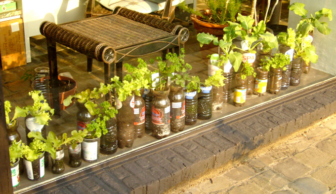 2007 02   Small kitchen garden. Growing vegetables and tree saplings in recycled bottles  pots and