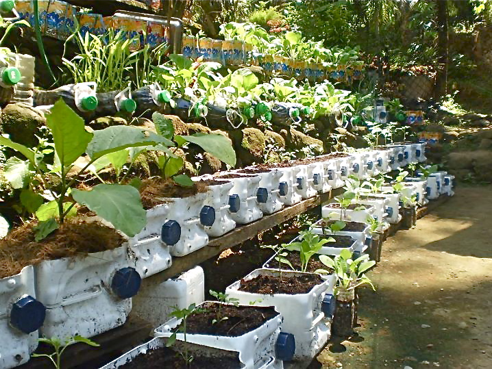 November 2011 page 2 container gardening - Small space farming image ...
