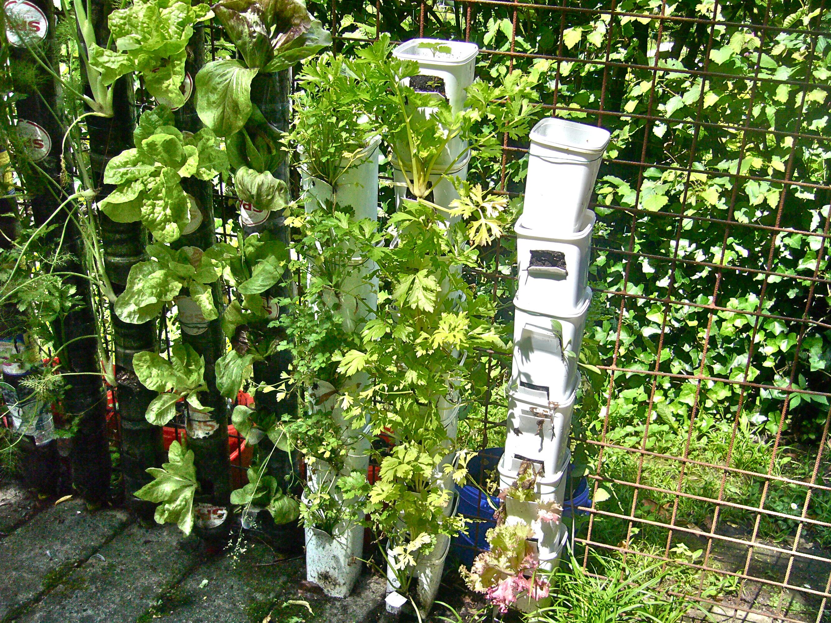 C Mo Hacer La Huerta Vertical De Botellas De Pl Stico Willem Van  ~ Como Hacer Una Huerta Ecologica