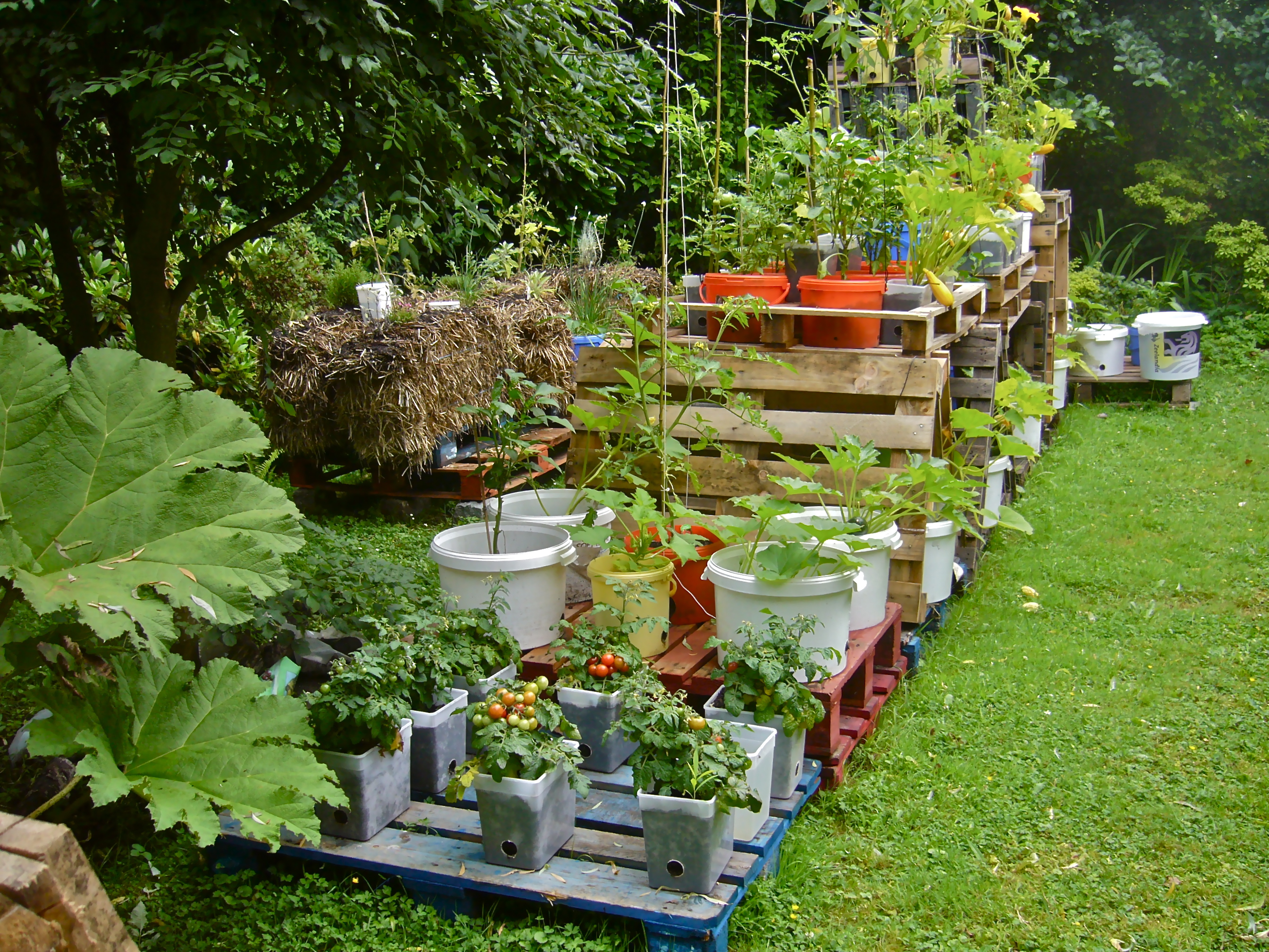 Container Garden Design garden design: garden design with container gardening on pallets a