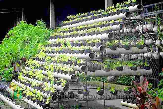 """Exploring Negros Occidental: the """"Organic Capital"""" of the Philippines: http://ati.da.gov.ph/ati2/sites/default/files/u278/29.jpg"""