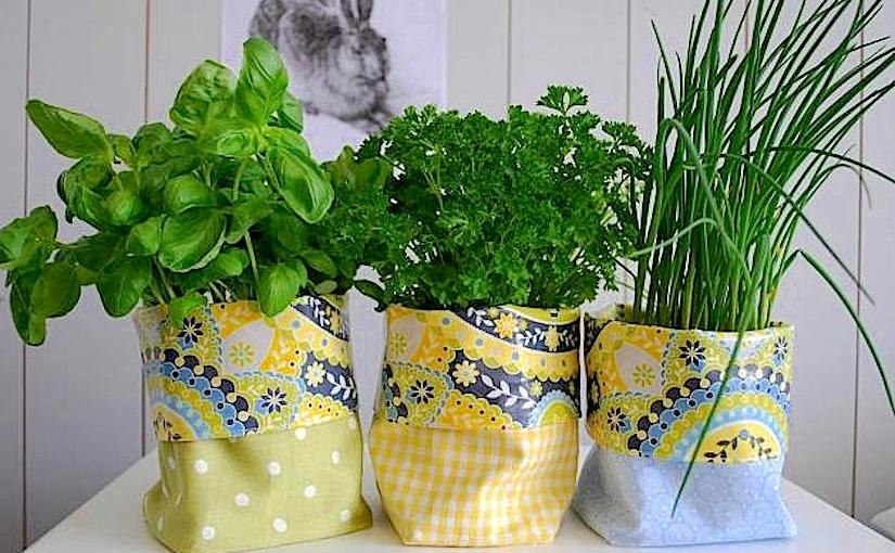 Growing herbs incontainers