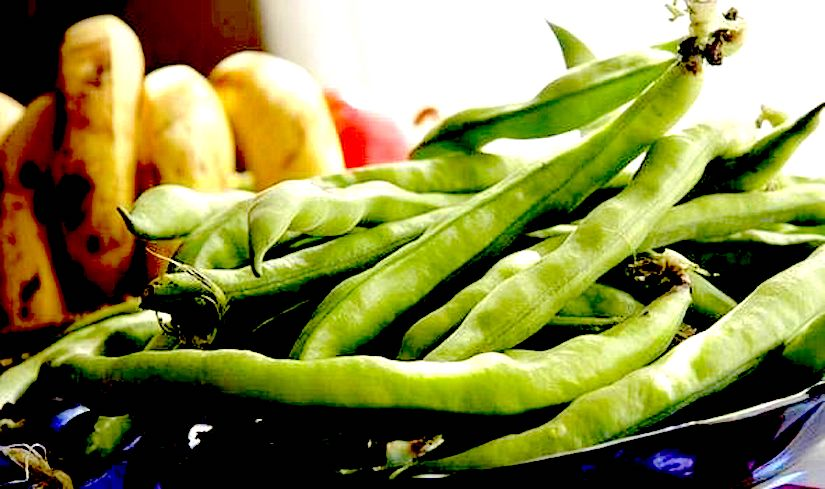 You will love your broadbeans