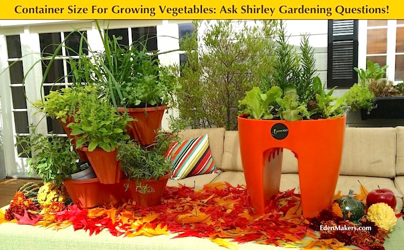 http://edenmakersblog.com/wp-content/uploads/2015/02/container-sizes-for-growing-vegetables-small-medium-large-explained-edenmakers-blog-e1423039279598.jpg
