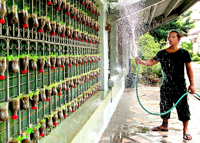 Backyard gardening in Manila (Ph.): https://adaptation-fund.org/sites/default/files/HM_Manila_Philippines_Velas.jpg