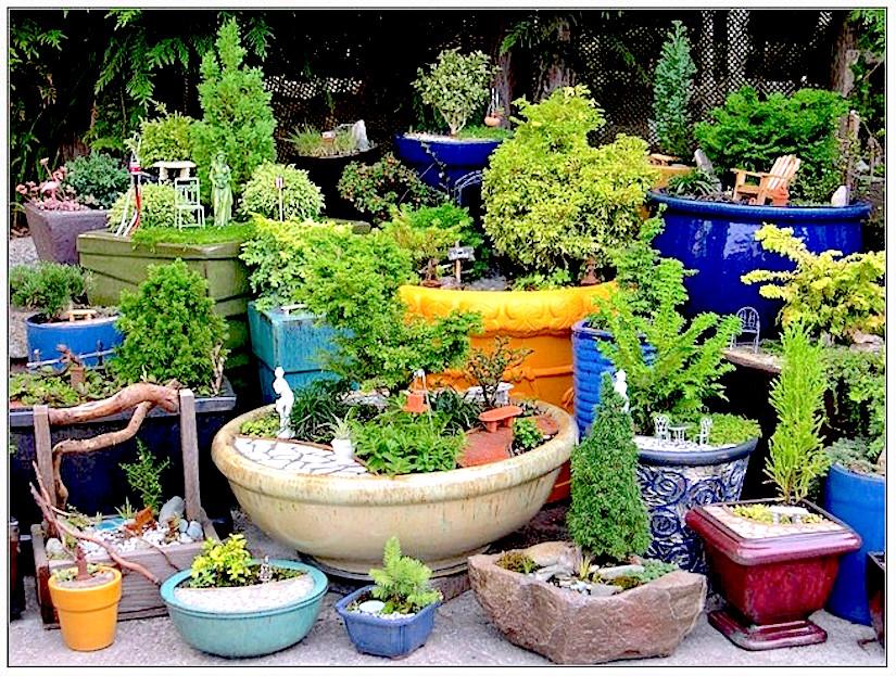 http://hkeastasia.com/wp-content/uploads/2015/02/indoor-container-gardening.jpg