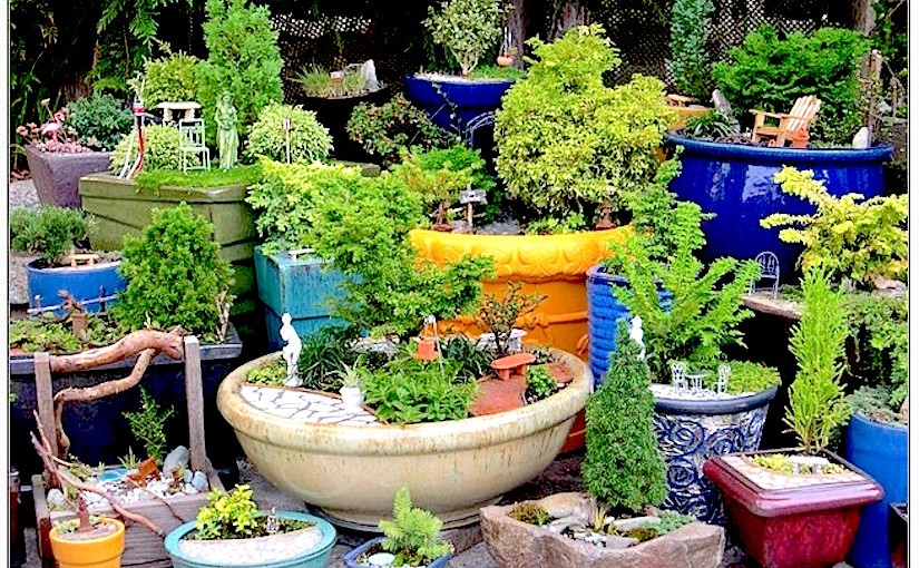 Different aspects of container gardening – CONTAINER GARDENING