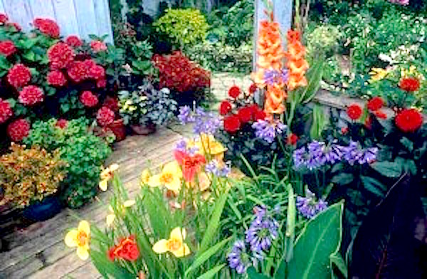 Go organic incontainers