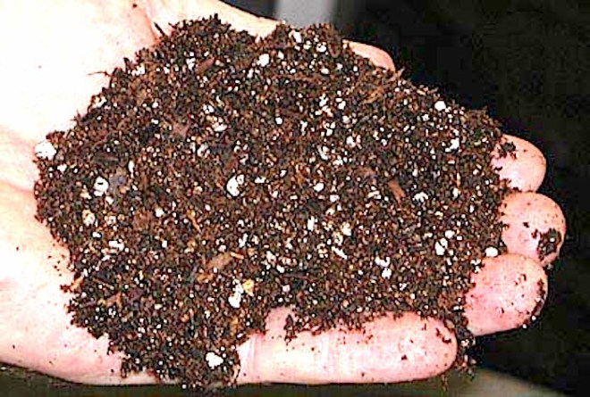 Potting soil: http://www.gaaged.org/Photos%20and%20Clipart/Nursery_Landscape_tools_and_Equipment/images/Potting%20soil%203.jpg