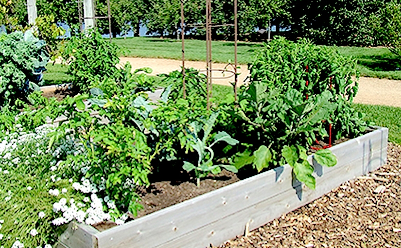 Wherever you find a sunny location, you can growvegetables