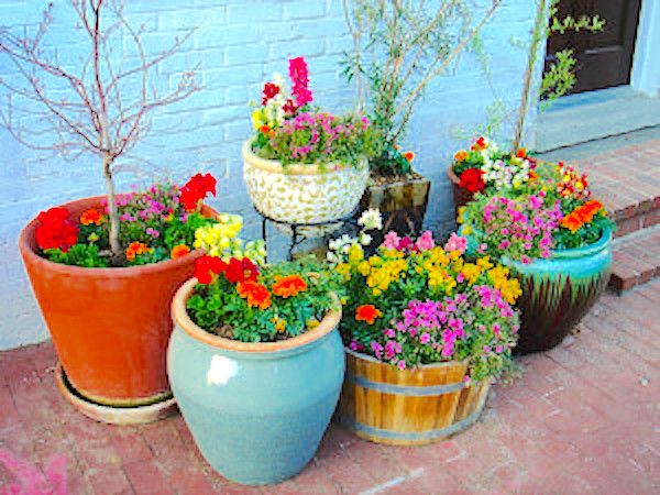 http://containergardeningpedia.com/wp-content/uploads/2015/02/Location-For-Container-Gardening-300x225.jpg