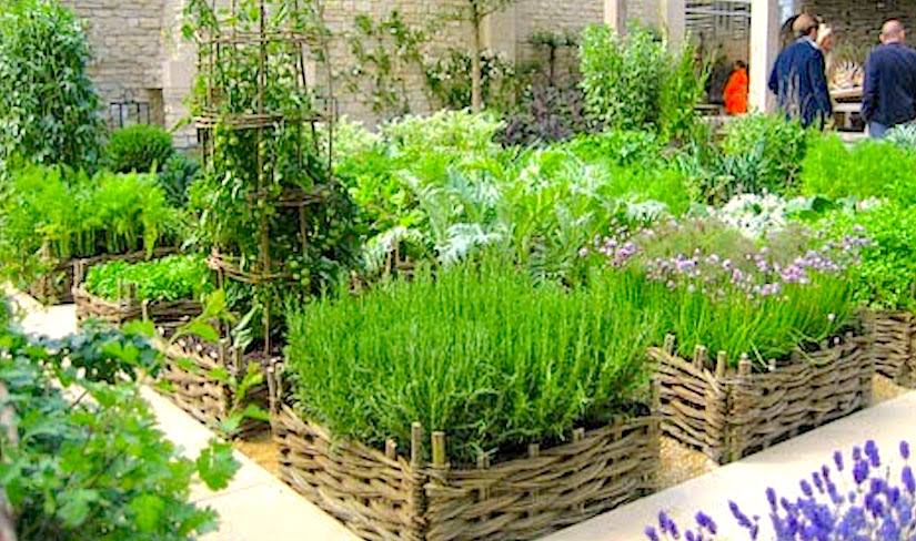 Having fresh herbs on hand CONTAINER GARDENING