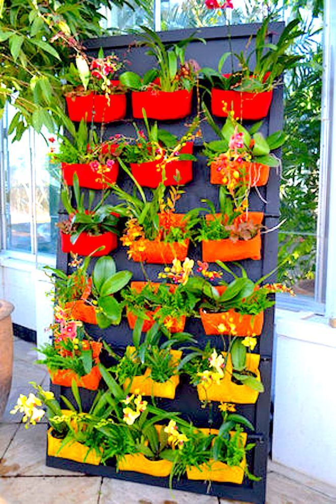 In this earlier exhibit, Lewis Ginter Botanical Garden's vertical display of orchids relied on plant-friendly felt pockets sewn by Director of Horticulture Grace Chapman and volunteers - http://bloximages.newyork1.vip.townnews.com/richmond.com/content/tncms/assets/v3/editorial/4/e0/4e0af38d-42d4-58d1-8bf6-4e956e259abe/554d1524a8ba4.image.jpg?resize=300%2C450