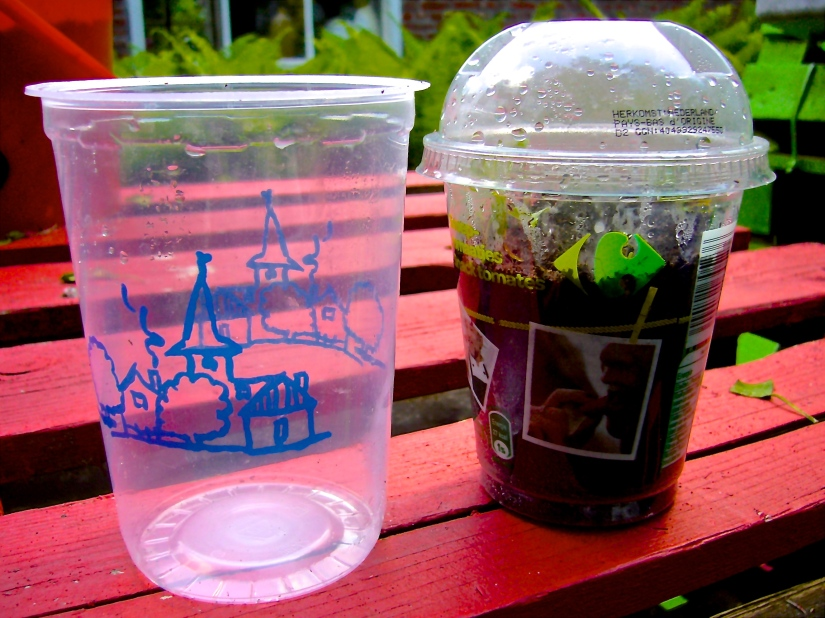 Left, yogurt pot - Right, Cherry tomato pot with dome - Photo WVC 2015-05-21 - P1120058