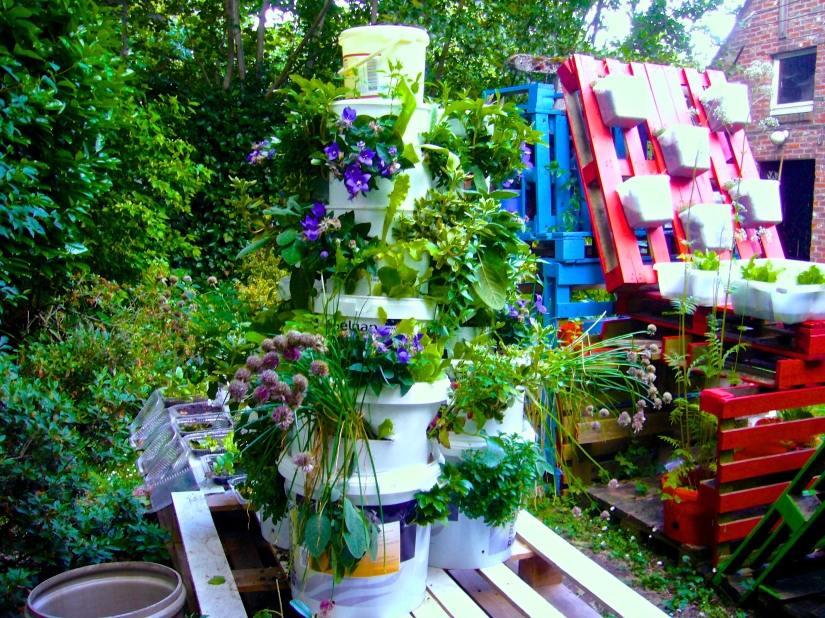 A pyramid of 3 bucket towers planted with flowering plants, vegetables and herbs - Photo WVC 2015-05-24 P1120178
