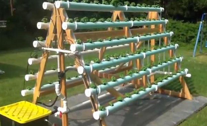 Homemade vertical a frame hydroponic system container gardening - Hydroponic container gardening ...