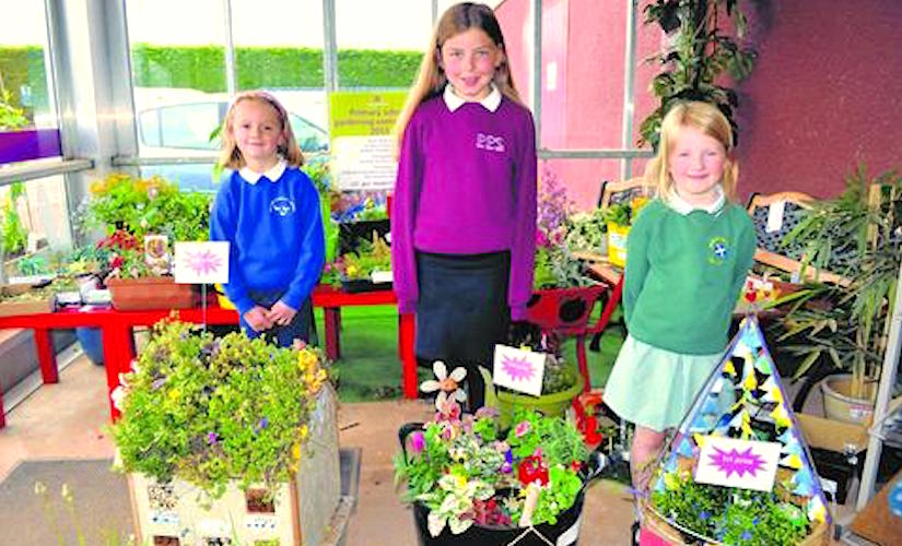 Primary school gardening competition - CONTAINER GARDENING