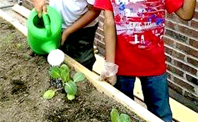 http://bloximages.chicago2.vip.townnews.com/tucsonlocalmedia.com/content/tncms/assets/v3/editorial/6/21/62182d7b-1785-5e2a-b727-d8d281c28920/57e39712cf961.image.jpg?resize=250%2C187