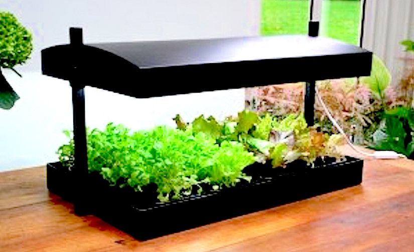 https://www.quickcrop.co.uk/site/uploads/sys_products/garland-growlight-station.jpg